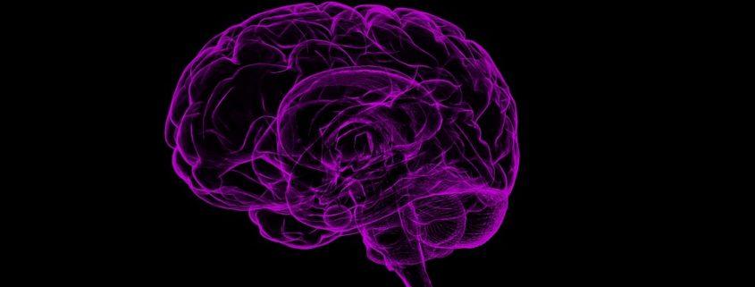 Estados Mentales cerebrales